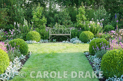 White metal bench in the formal garden to the east of the house framed with clipped box balls, Stachys byzantina 'Silver Carp...