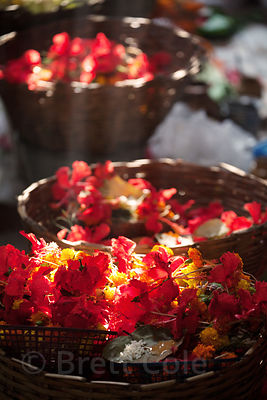 Workers string flowers at a temple near Sovabazar Ghat, Kolkata, India.