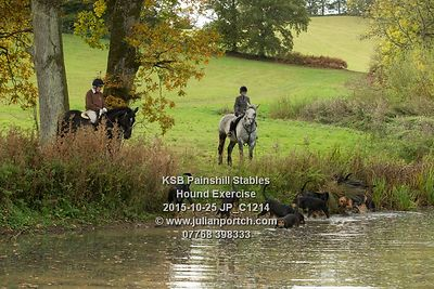 2015-10-25 KSB Painshill Stables Hound Exercise