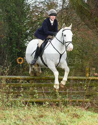 Caroline Stewart jumping a hunt jump in Holwell. The Belvoir Hunt at Hill Top Farm 1/12