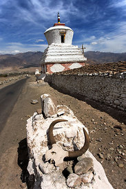 Skull with antlers from a Yak or dong (B. grunniens) sit atop a mani wall in Stok village, Leh, Ladakh, India