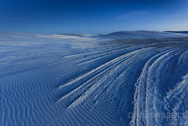 Lines in Sand | White Sands, NM