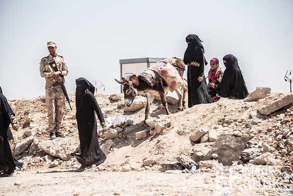 Women and their donkey pass an Iraqi Army Soldier on their way out of Mosul as they escape the conflict zone. Mosul, Iraq, Ma...