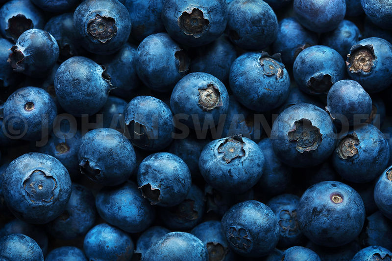 Blueberries Background Close-up