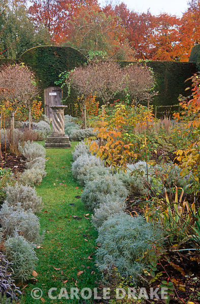 Path edged with santolina leads towards a sundial surrounded by standard honeysuckles at the centre of the Herb Garden at Cra...
