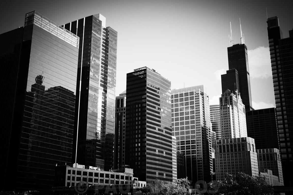 Downtown Chicago Buildings in Black and White