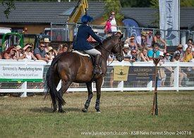 2018-07-24 KSB New Forest Show - Inter Hunt Relay