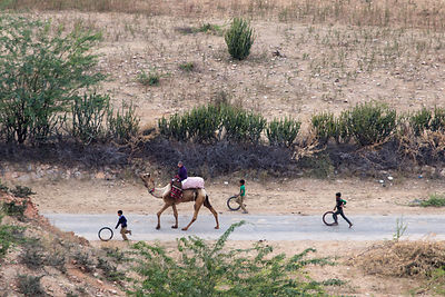 Children roll hoops down a country road near Tilora, Pushkar, Rajasthan, India
