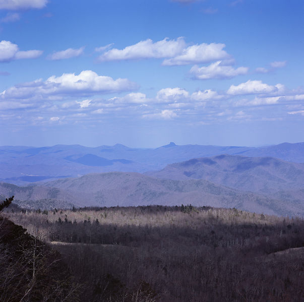 044-Blue_Ridge_D145217_Blue_Ridge_In_Early_Spring_042_Preview