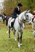 Nick Wright at the meet. The Cottesmore Hunt at Somerby
