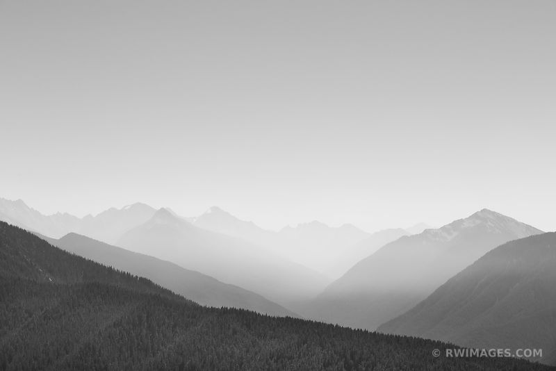 HURRICANE RIDGE OLYMPIC NATIONAL PARK WASHINGTON MOUNTAINS BLACK AND WHITE
