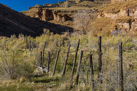 Old Wood and Barbed Wire Fence in Nine Mile Canyon