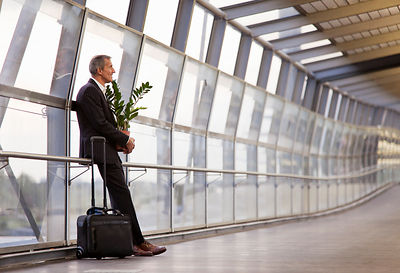 Businessman with luggage and plant