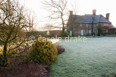 Frosty garden with mixed borders, clipped evergreens and white stemmed birches with Elizabethan house beyond. Coates Manor, C...