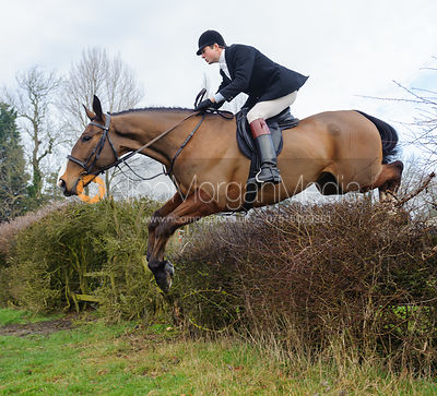 William Bell jumping the first hedge - Barleythorpe