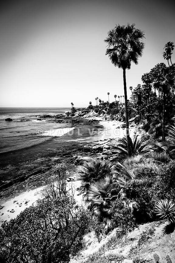 Laguna Beach Pacific Ocean Shoreline in Black and White