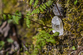 Quartz Crystal at Great Serpent Mound