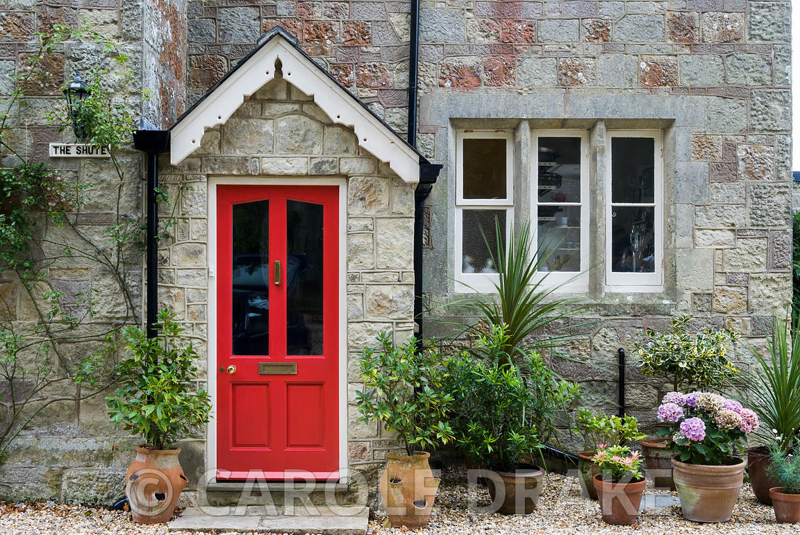 Front door surrounded by shrubs in terracotta containers. The Shute, nr Ventnor, Isle of Wight, UK