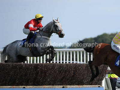 2.50pm 1st Sept 2013 Novices Steeple Chase with winner Dineur