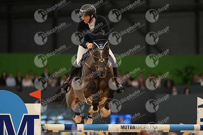 DEVOS Pieter, (BEL), Dream Of India Greenfield  during CSI5-W_1,60_Longines World Cup Grand Prix competition at Madrid Horse ...