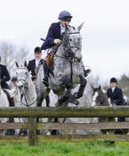 Harriet Walker jumping a hunt jump from the meet