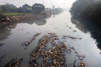 Trash fills a creek near Dhapa, Kolkata, India. Dhapa is the site of Kolkata's largest landfill, and numerous recycling and i...