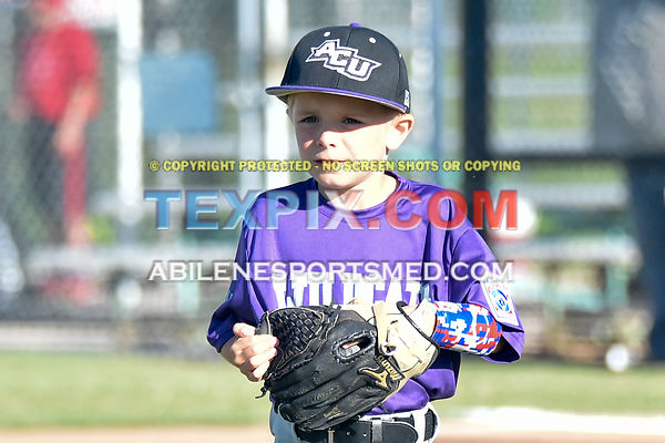 05-06-16_BB_LL_DIX_Farm_Wildcats_v_Gators_BR_525