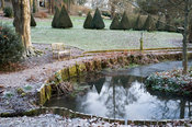 Icy pond on a winter morning with an avenue of dark yew pyramids running though the garden above.
