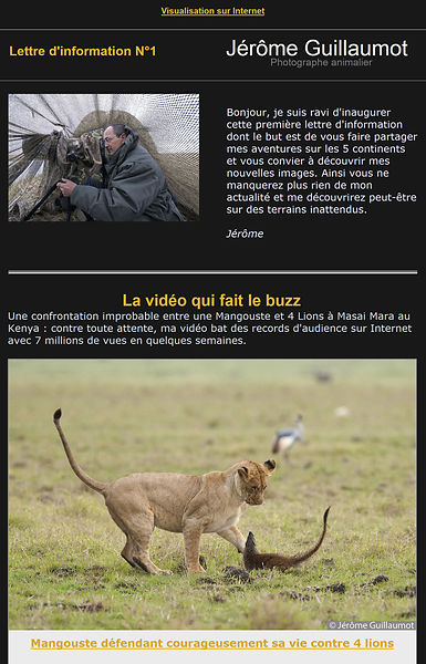 Jérôme Guillaumot, Wildlife photographer, Newsletter N°1