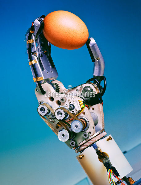 Prosthetic hand holding an egg