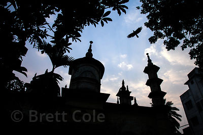 Silhouette of birds flying near a mosque in Shyambazar, Kolkata, India.