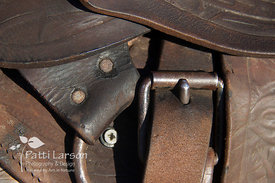 Leather Saddle and Buckles