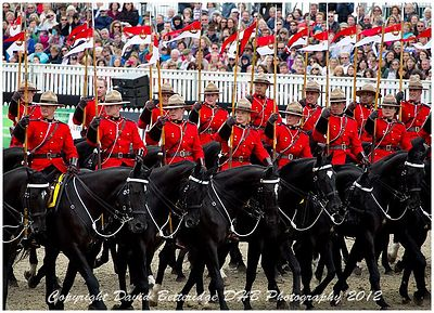 royal_windsor_2012_DHB_0509