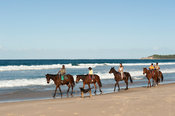 horse riding on the beach, Tofo, Mozambique