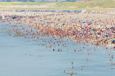 Aerial view of busy beach crowded with people on a hot August weekend, Hook of Holland, Netherlands