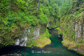Plunge Pool and Gorge Below Punchbowl Falls