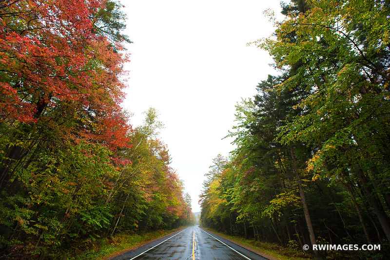 FALL COLORS AUTUMN FOLIAGE KANCAMAGUS HIGHWAY WHITE MOUNTAINS NEW HAMPSHIRE DRIVING ROUTE 112 FOREST ROAD COLOR