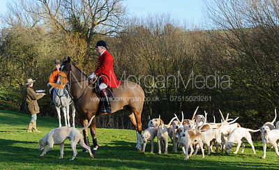 The Cottesmore Hunt at Stockerston 11/1