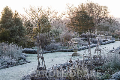 Frosty remains of herbaceous plants in the Rainbow Garden. Kingston Maurward Gardens, Dorchester. Dorset, UK
