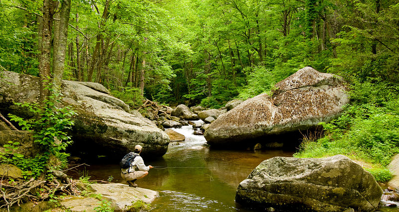 015-Eastern_Landscapes_D105106_BLUE_RIDGE_FLY_FISHING-36_Preview