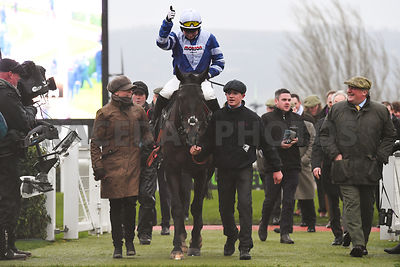Frodon_winners_enclosure_15122018-1