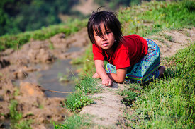 Young Black Hmong Girl Along Edge of Rice Paddy