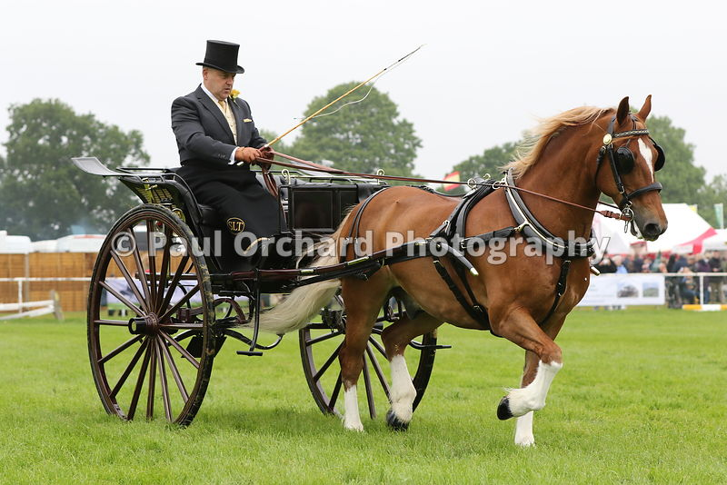 Suffolk County Show 2016