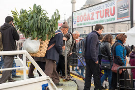 An old man carrying plants on his back coming off from a ferry in Eminounu, Istanbul.