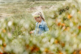 Girl picking sea buckthorn in Thy, Denmark 5