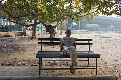 India - New Delhi - An old man reads a newspaper on a park bench in the early morning
