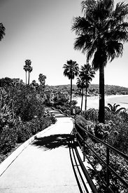 Laguna Beach Heisler Park in Black and White