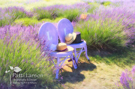 A Seat in the Lavender Gardens