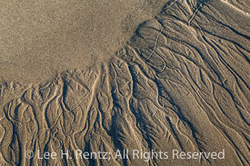 Receding Wave Patterns in Sand on Shi shi Beach in Olympic National Park