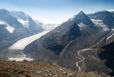 The Athabasca Glacier from Wilcox Pass, Jasper NP, Canadian Rockies.